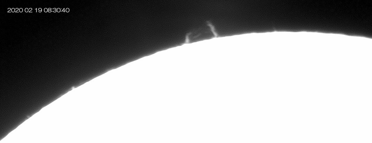 2月19日の太陽_e0174091_16253610.jpg