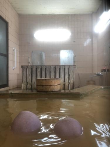 秘湯、松の湯で湯治_d0087595_19103458.jpeg
