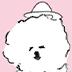 3/13~3/25 じゅんさん exhibition【大いぬいぬ展】開催のお知らせ_b0405125_17080954.png