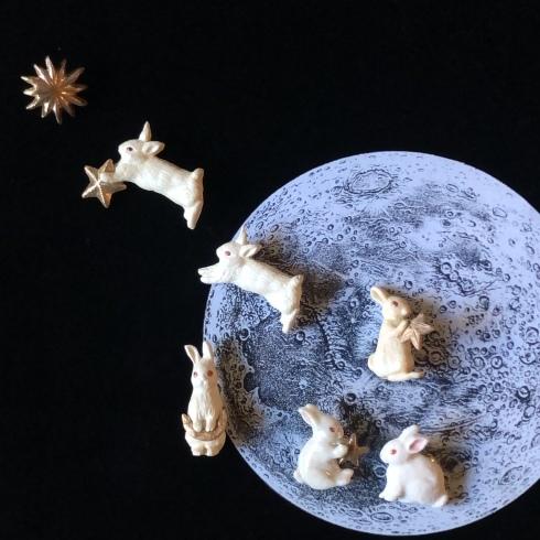 企画展『月うさぎ』に参加します @小平・一橋学園 隠れ家カフェノルン_a0137727_17155268.jpeg