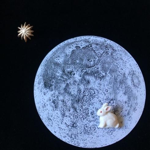 企画展『月うさぎ』に参加します @小平・一橋学園 隠れ家カフェノルン_a0137727_17173699.jpeg