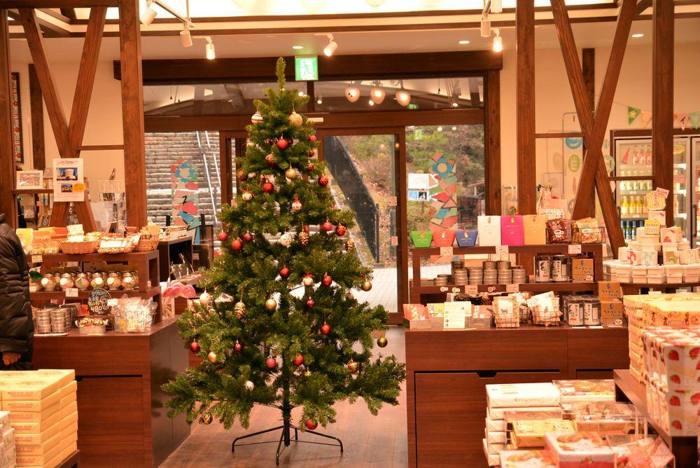帝国ホテル内のクリスマス装飾(今更ながら)_e0373930_20333974.jpg
