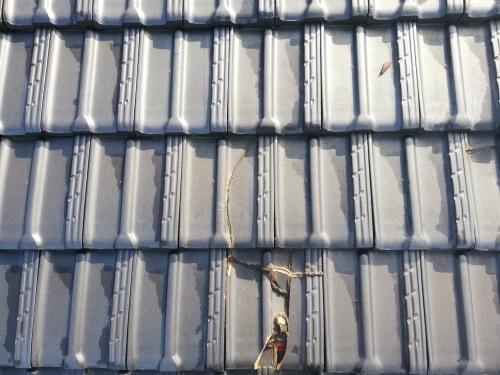 笛吹市 銀黒の屋根 其の一_b0242734_19532008.jpg