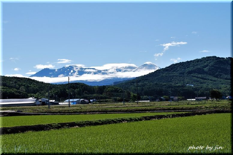 初夏の大雪山連峰_a0315942_20535852.jpg