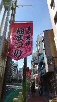 東覚寺さん 亀戸天神さまは梅まつり_d0256145_10554424.jpg
