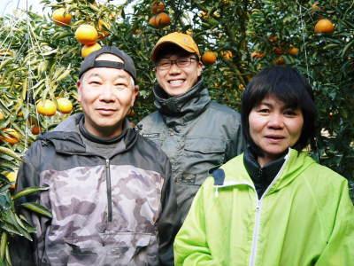 究極の柑橘『せとか』 令和2年の出荷スタート!収穫の様子を現地取材!(番外編)商品ラインナップ紹介!_a0254656_16563737.jpg