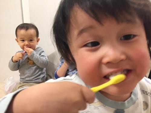 2020.02.20 歯ブラシが買えた。_a0145471_08144791.jpg