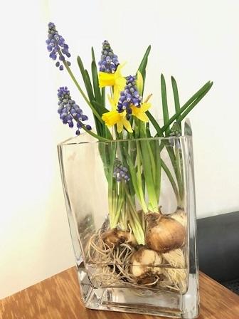 今週のお花は_f0202682_17295521.jpg