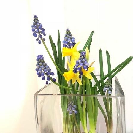 今週のお花は_f0202682_17323655.jpg