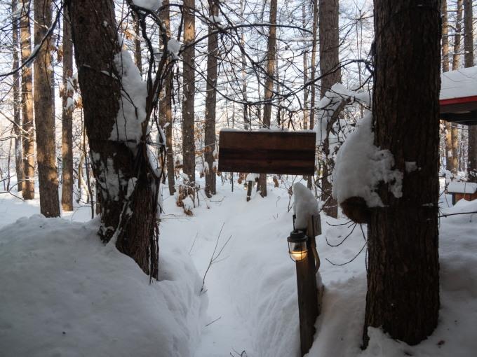 今季最大の積雪量に・・結局、冬に降る雪の量は同じ?_f0276498_14364525.jpg