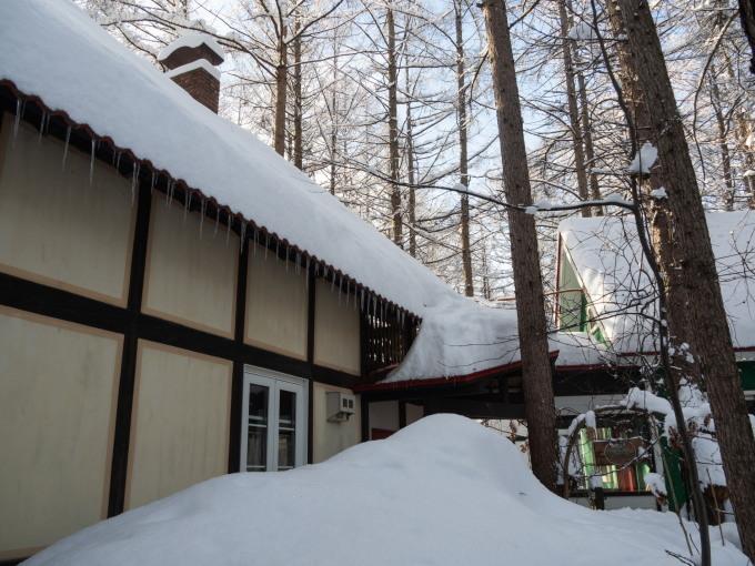 今季最大の積雪量に・・結局、冬に降る雪の量は同じ?_f0276498_14365596.jpg