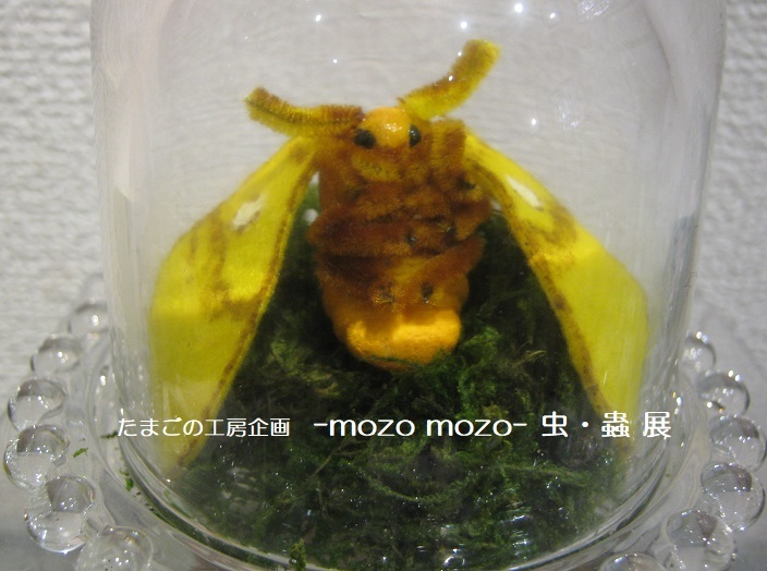 たまごの工房企画 -mozo mozo- 虫・蟲 展  その10_e0134502_18130070.jpg