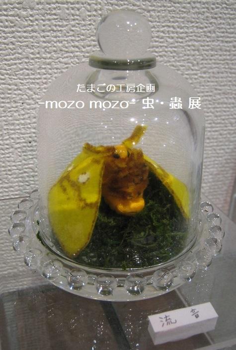 たまごの工房企画 -mozo mozo- 虫・蟲 展  その10_e0134502_18130518.jpg