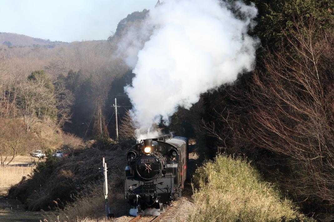 山影を抜けた白煙 - 2020年・真岡鉄道 -_b0190710_21492333.jpg