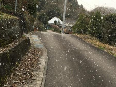 2月20日(木) 剣山も晴れました。_c0089831_05440955.jpeg