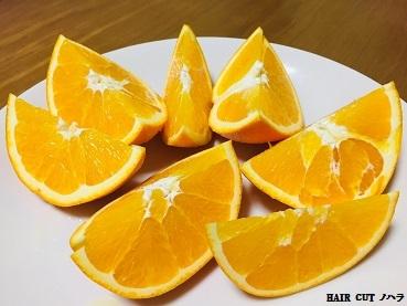 献上ネーブルオレンジ_e0145332_13273761.jpg