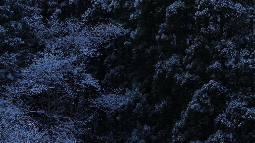 天童の雪_f0050534_23301924.jpg