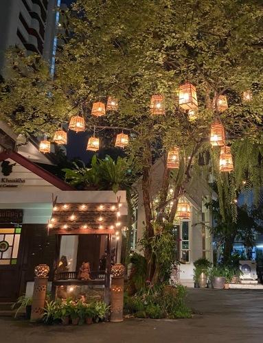 タイの旅 今回の目的のまとめ _b0325640_14024910.jpg