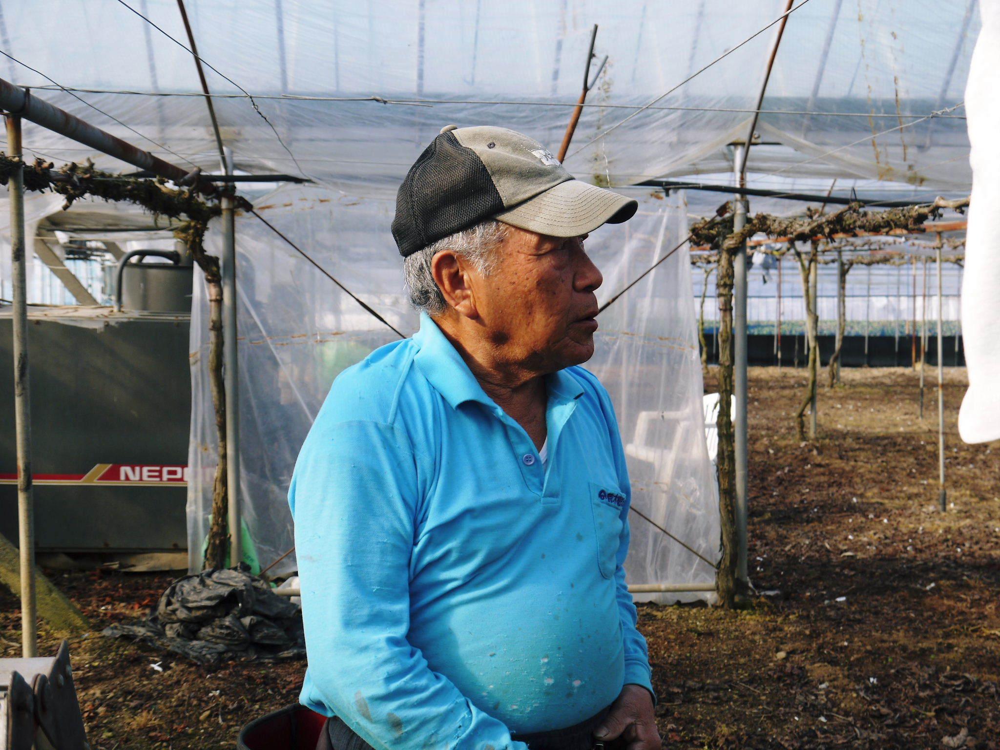 熊本ぶどう 社方園 ハウスの内張り作業を熊本農業高校からの農業実習と共に行っています(2020)前編_a0254656_17364786.jpg