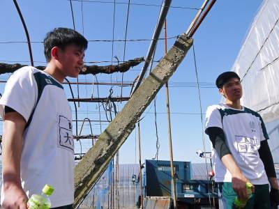 熊本ぶどう 社方園 ハウスの内張り作業を熊本農業高校からの農業実習と共に行っています(2020)前編_a0254656_17504401.jpg