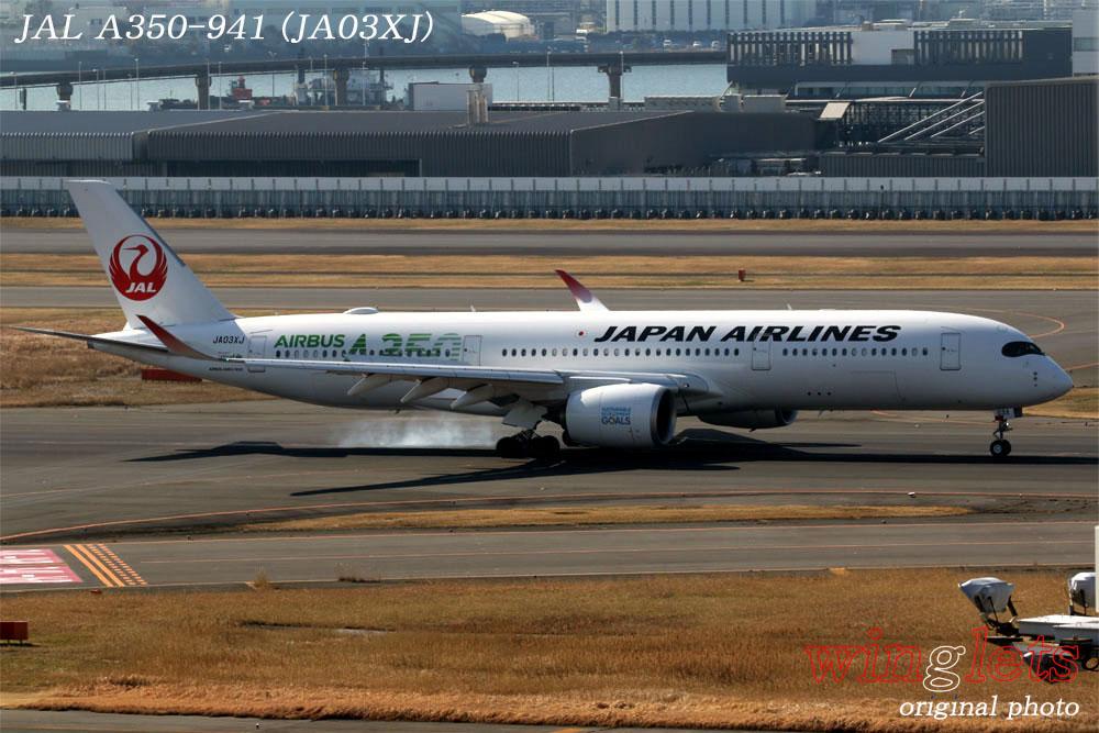 '20年 羽田空港レポート ・・・ JAL/JA03XJ_f0352866_20122396.jpg
