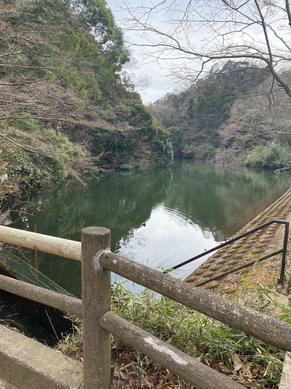 池の公園♪_b0275998_09152126.jpg