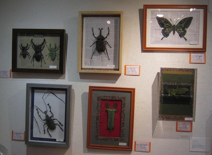たまごの工房企画 -mozo mozo- 虫・蟲 展  その11 _e0134502_20095460.jpg