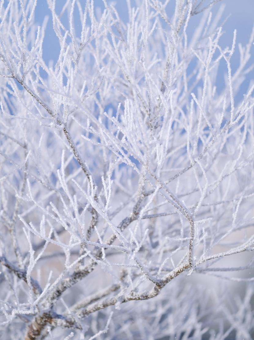 寒さを求めて!_c0167028_01011270.jpg