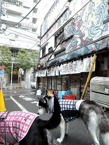 散歩屋日誌【35】_c0062832_15494005.jpg