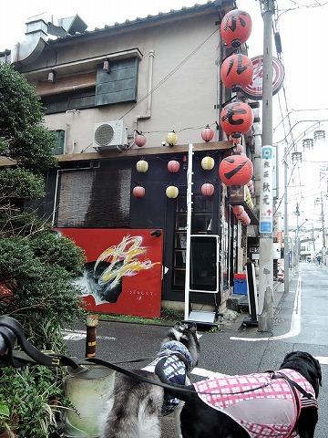 散歩屋日誌【35】_c0062832_15494036.jpg