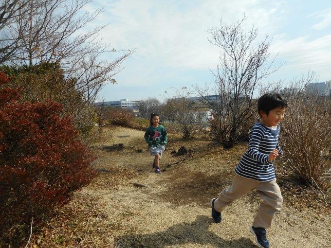 Spring Is Around The Corner!_d0148342_11240975.jpg