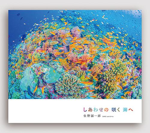 新刊写真集 佐野誠一郎「しあわせの 咲く 海へ」のご案内_c0142549_15463264.jpg