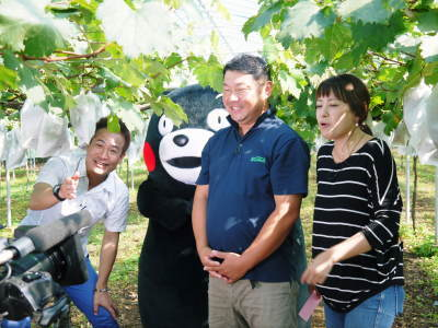 熊本ぶどう 社方園 ハウスの内張り作業を熊本農業高校からの農業実習と共に行っています(2020)後編_a0254656_15255329.jpg