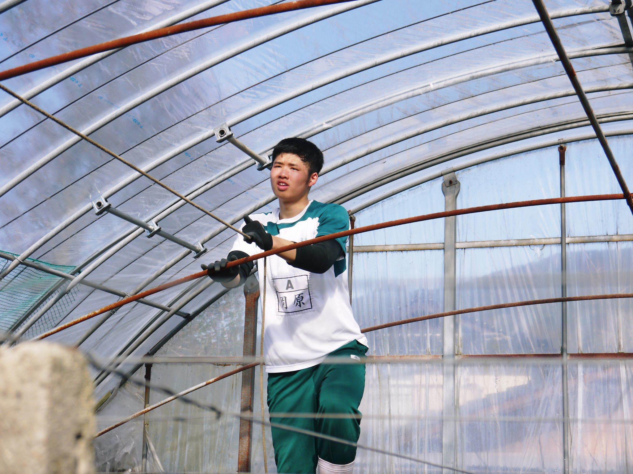 熊本ぶどう 社方園 ハウスの内張り作業を熊本農業高校からの農業実習と共に行っています(2020)後編_a0254656_16590658.jpg