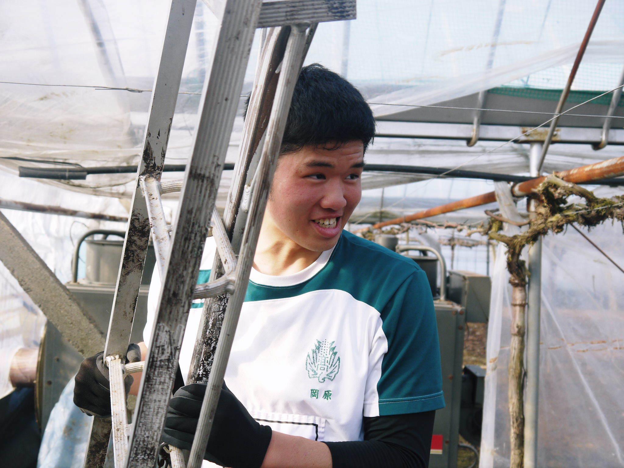 熊本ぶどう 社方園 ハウスの内張り作業を熊本農業高校からの農業実習と共に行っています(2020)後編_a0254656_17030417.jpg