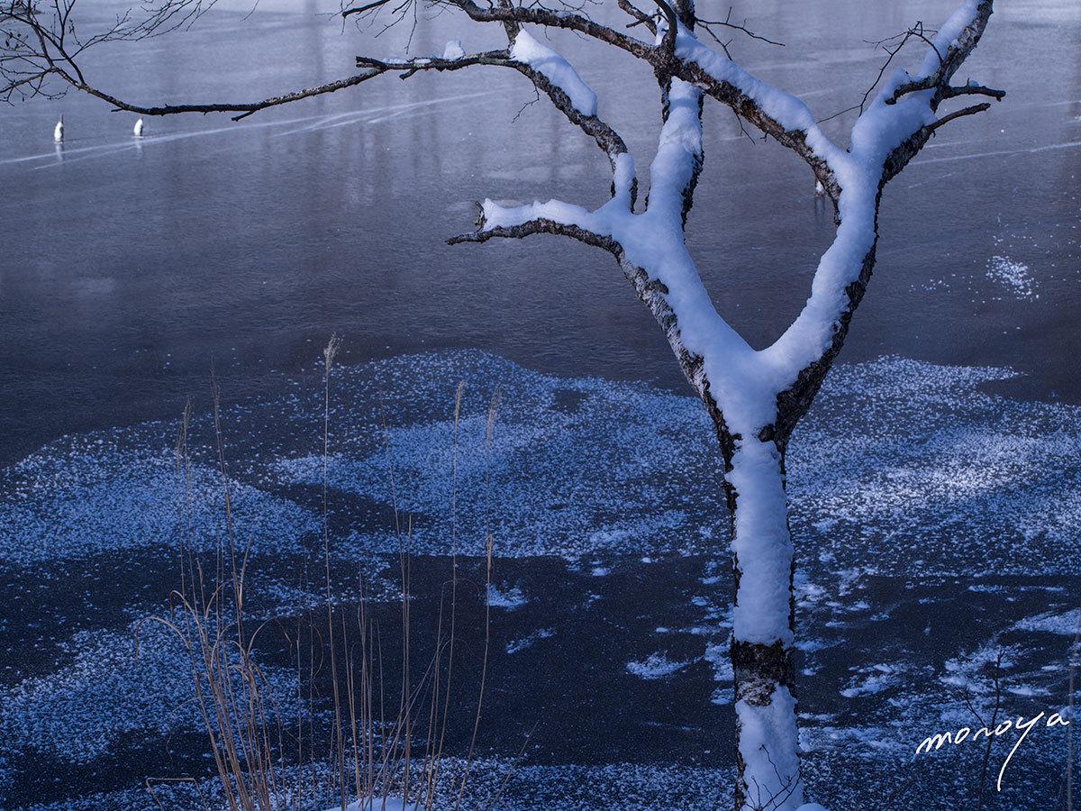 雪の池畔_c0085877_05372985.jpg