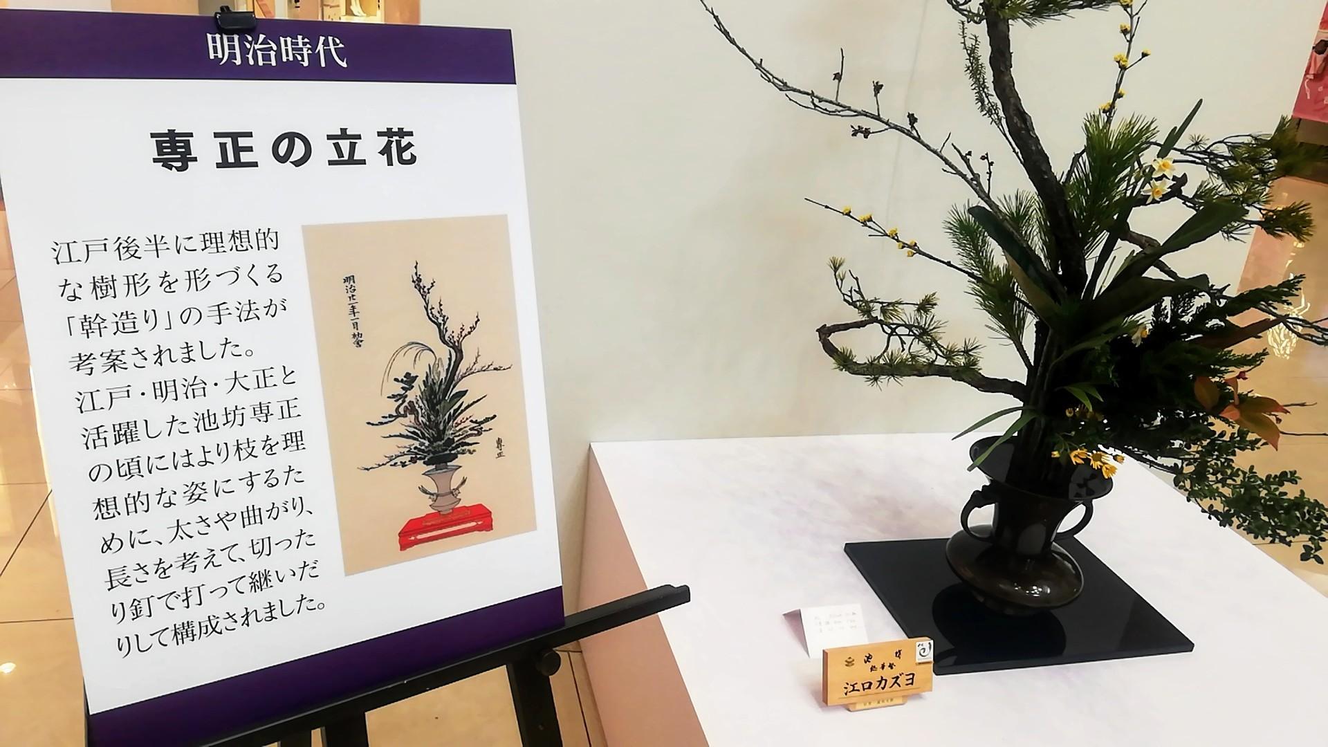 ゆめタウン佐賀開催の池坊展へ_d0195183_20124954.jpg