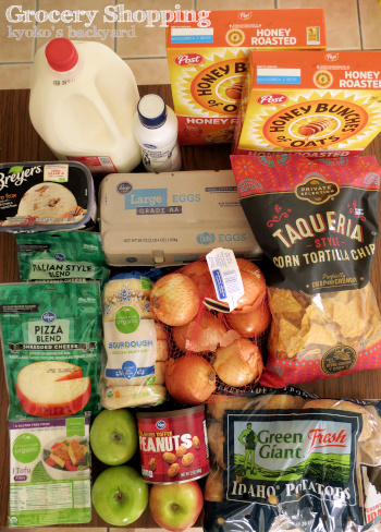 週1の食材まとめ買いと献立(2-3)_b0253205_23173060.jpg