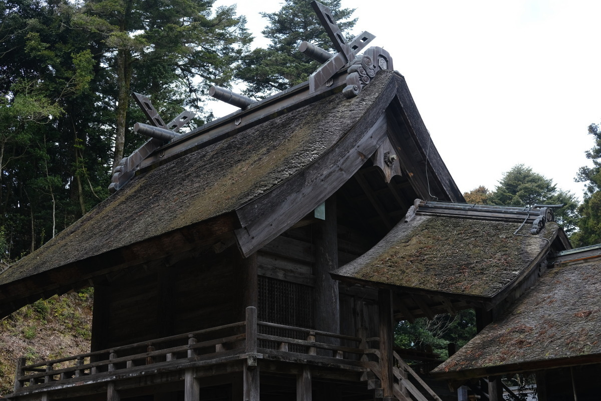松江市  再訪、神魂(かもす)神社_b0061717_03001853.jpg