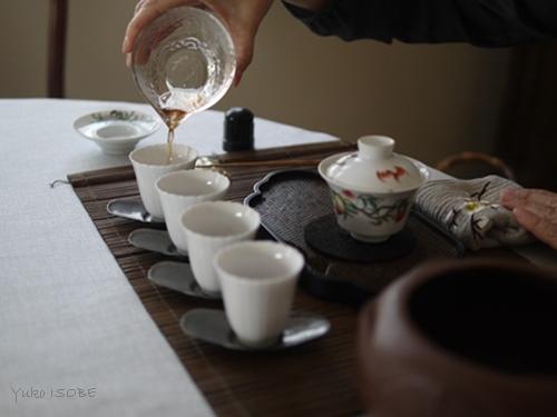 岩茶の力強さ 鉄羅漢_a0169924_22511908.jpg