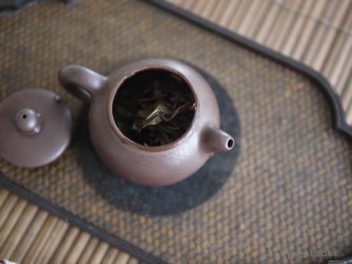 岩茶の力強さ 鉄羅漢_a0169924_22523934.jpg