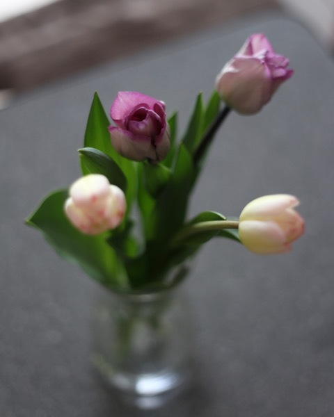Tulips_c0342646_13101379.jpg