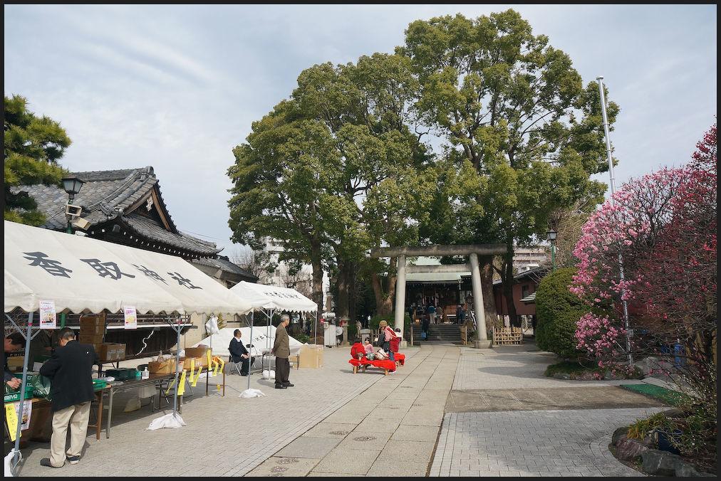 小村井 香取神社・香梅園_b0340572_10473312.jpg