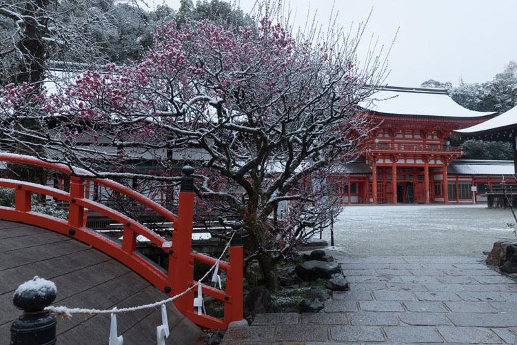 下鴨神社_e0051888_06471555.jpg