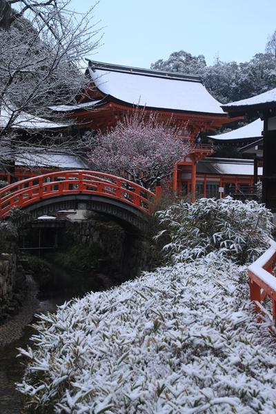下鴨神社_e0051888_06494456.jpg