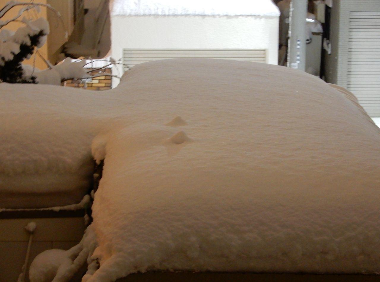 今朝までに降った雪はとけたのものの、夜になってからその倍の雪が積もりました_c0025115_23222258.jpg