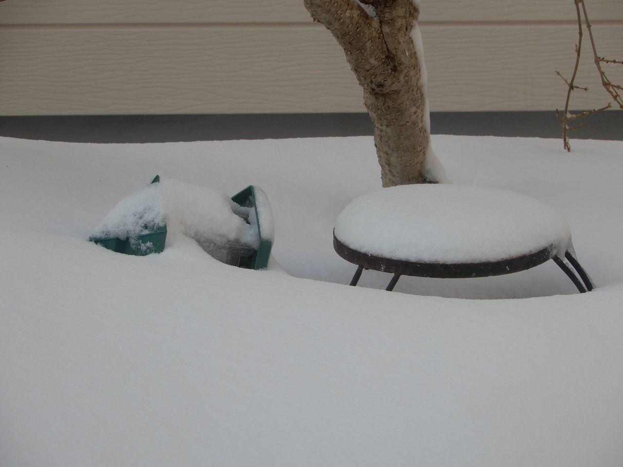 今朝までに降った雪はとけたのものの、夜になってからその倍の雪が積もりました_c0025115_23305867.jpg