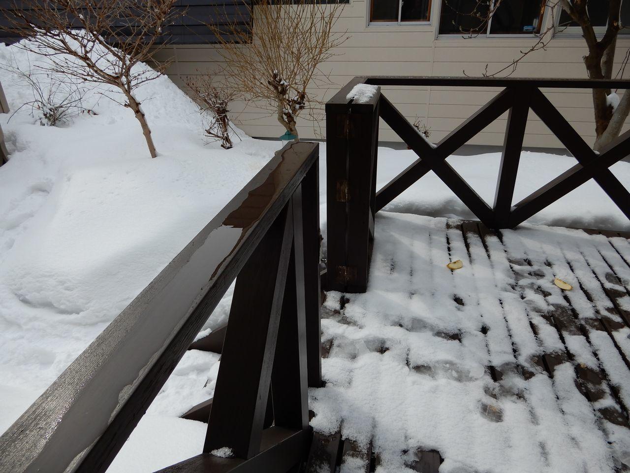 今朝までに降った雪はとけたのものの、夜になってからその倍の雪が積もりました_c0025115_23323090.jpg