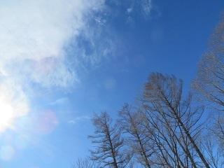 青空が広がり、暖かい一日が過ぎます_b0405523_01471374.jpg