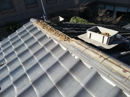 甲府市 シルバーの屋根 _b0242734_19401146.jpg